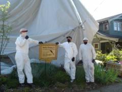 Mount Baker - Exterior Lead Paint Remediation